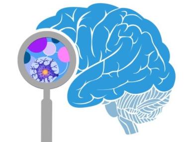 neuromarketing-neurozhin2